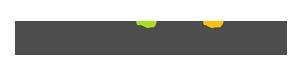Magnifisight Logo